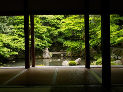 新緑 蓮華寺 (京都市左京区)