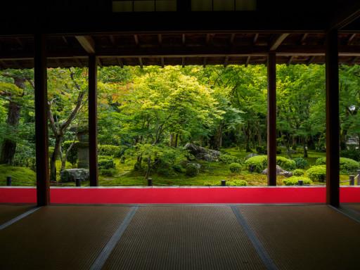 夏 圓光寺 (京都市左京区)