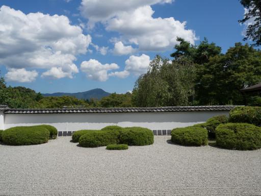 夏 正伝寺 (京都市北区)