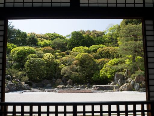 新緑 金地院(京都市左京区、南禅寺塔頭)