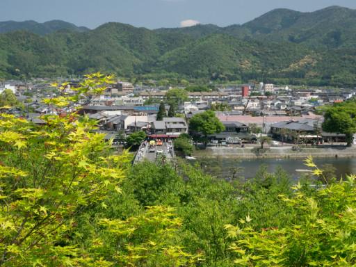 新緑 法輪寺(京都市西京区)