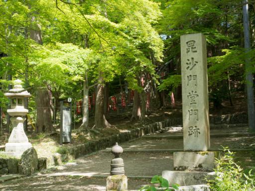 新緑 毘沙門堂(京都市山科区)