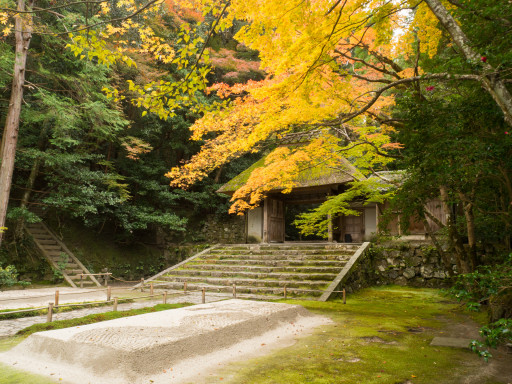 紅葉 法然院(京都市左京区)