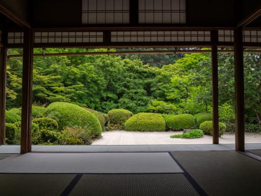 新緑 詩仙堂(京都市左京区)