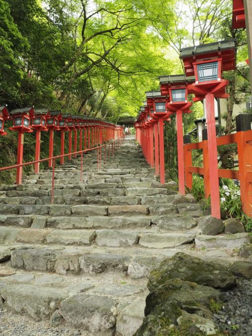 新緑 貴船神社(京都市左京区)