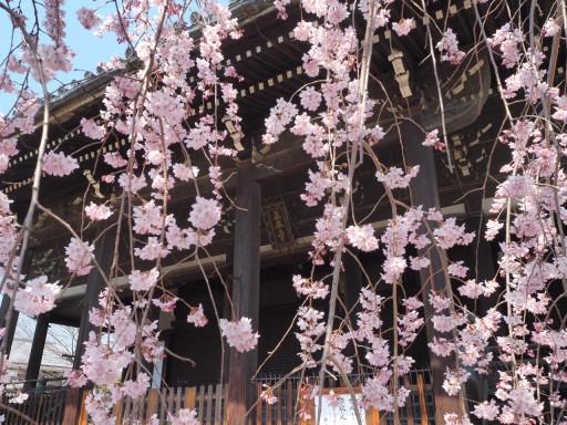 立本寺(京都市上京区)