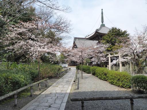 本法寺(京都市上京区)