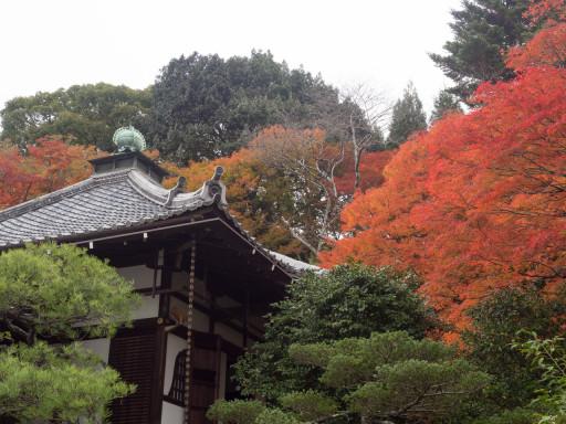 霊鑑寺(京都市左京区)